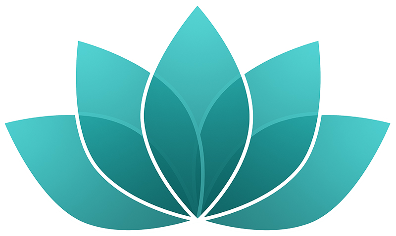 Lotus 1 turquoise b web